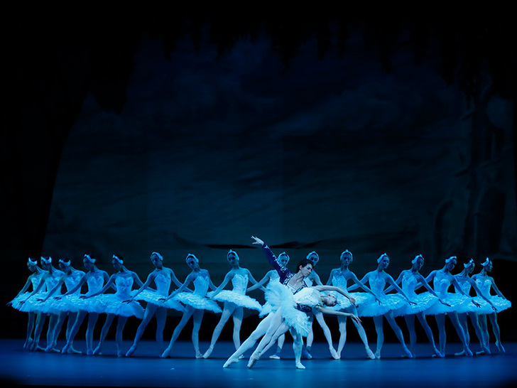Ballet for Children Swan Lake