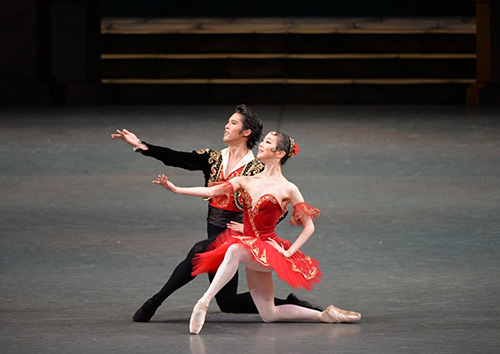 Grand Pas de Deux from